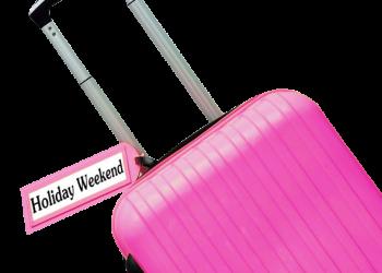 Pink Color Travel bag