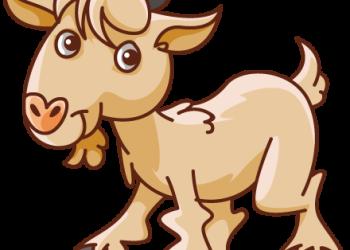 Cute cartoon goat standing