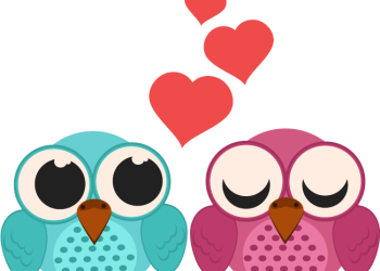 Valentines Day Loving Bird Couple Cartoon