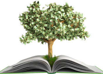 Small money tree growing on book opening